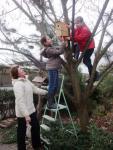 Крымские школьники устанавливают кормушки на деревьях