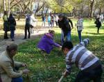 В Детском парке Симферополя школьниками были высажены деревья и кустарники