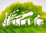 В Москове прошёл городской конкурс экологических проектов