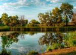 Наночастицы превращают болота в чистые озера